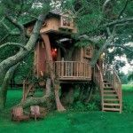 Tree + House = Pete Nelson, The Treehouse Guy