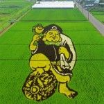 Rice Art in Japan