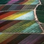 Rural Landscapes – Aerial Photography by Alex MacLean