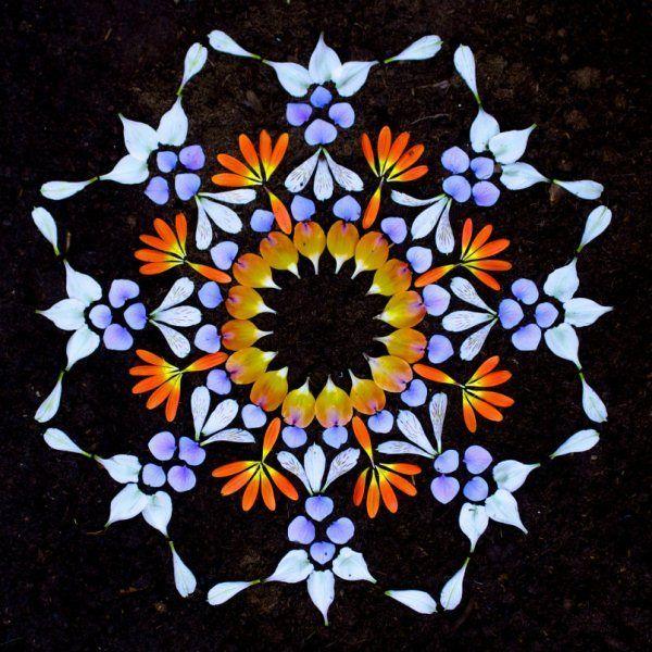 danmala553alstroemeria-hydrangea-gerbera-daisy