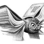 Apt Animals – Awesom Illustrations by Redmer Hoekstra