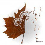 Extraordinary Leaf Art by Omid Asadi