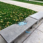 Zany Chalk Art by David Zinn