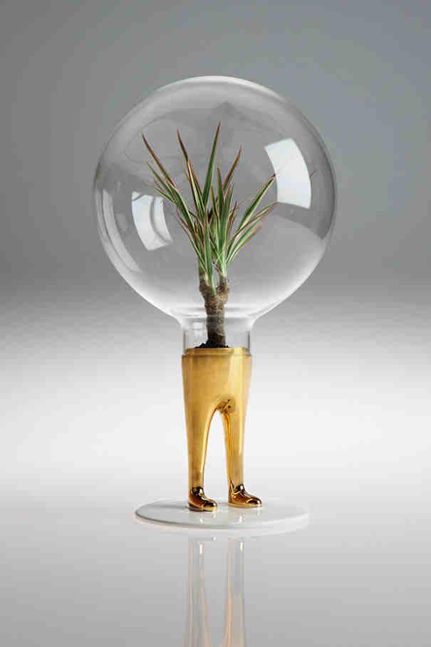 Domsai creative terrariums, matteo cibic