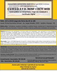 C U R S O: E F D- REINF + DCTF WEB