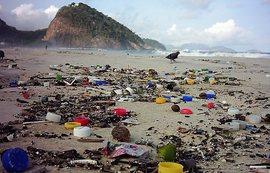 SENGE-RJ repudia desmonte de política ambiental no Rio