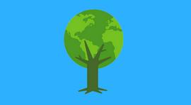PALESTRA GRATUITA: Perícia Judicial e Ambiental