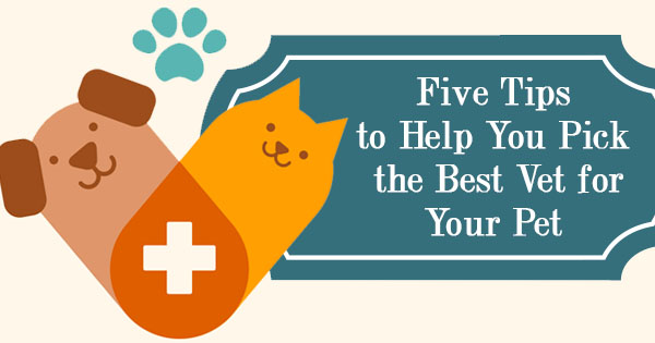 pet health care