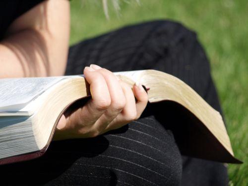 Bíblia em 1 ano – Leia o 190º dia