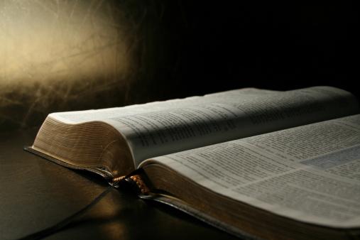 Bíblia em 1 ano- Leia o 360º dia