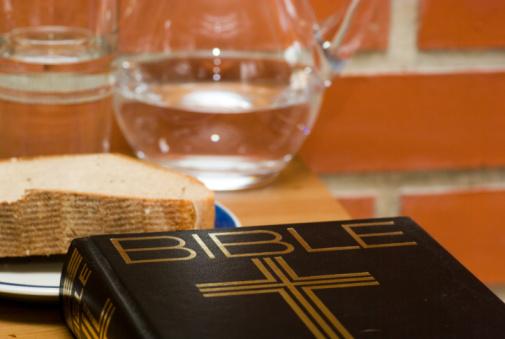 Bíblia em 1 ano – Leia o 232º dia