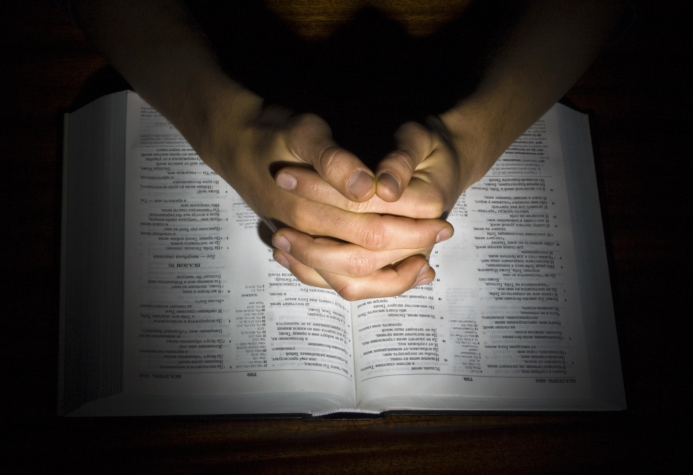 Bíblia em 1 ano – Leia o 206º dia