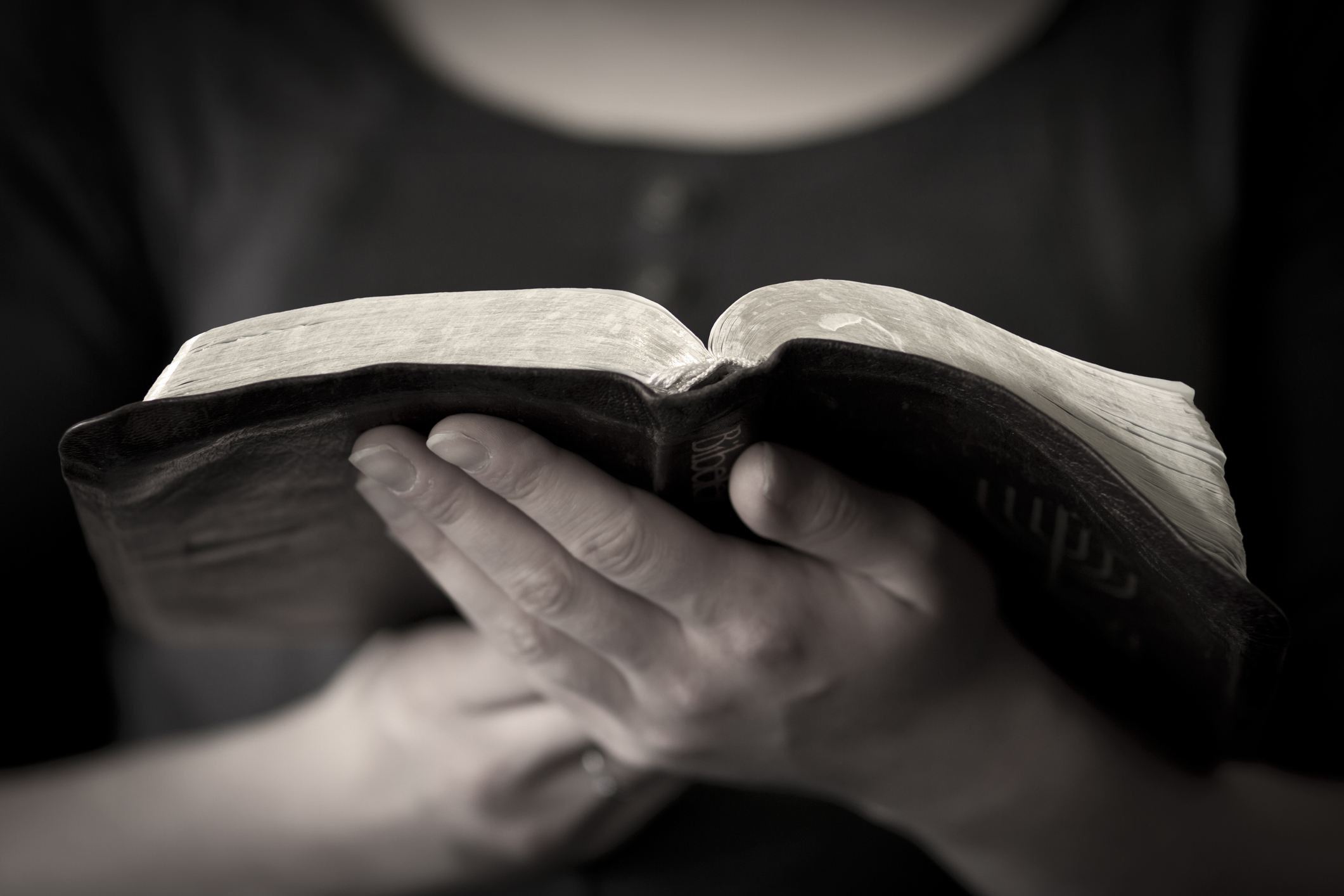 Bíblia em 1 ano – Leia o 341º dia