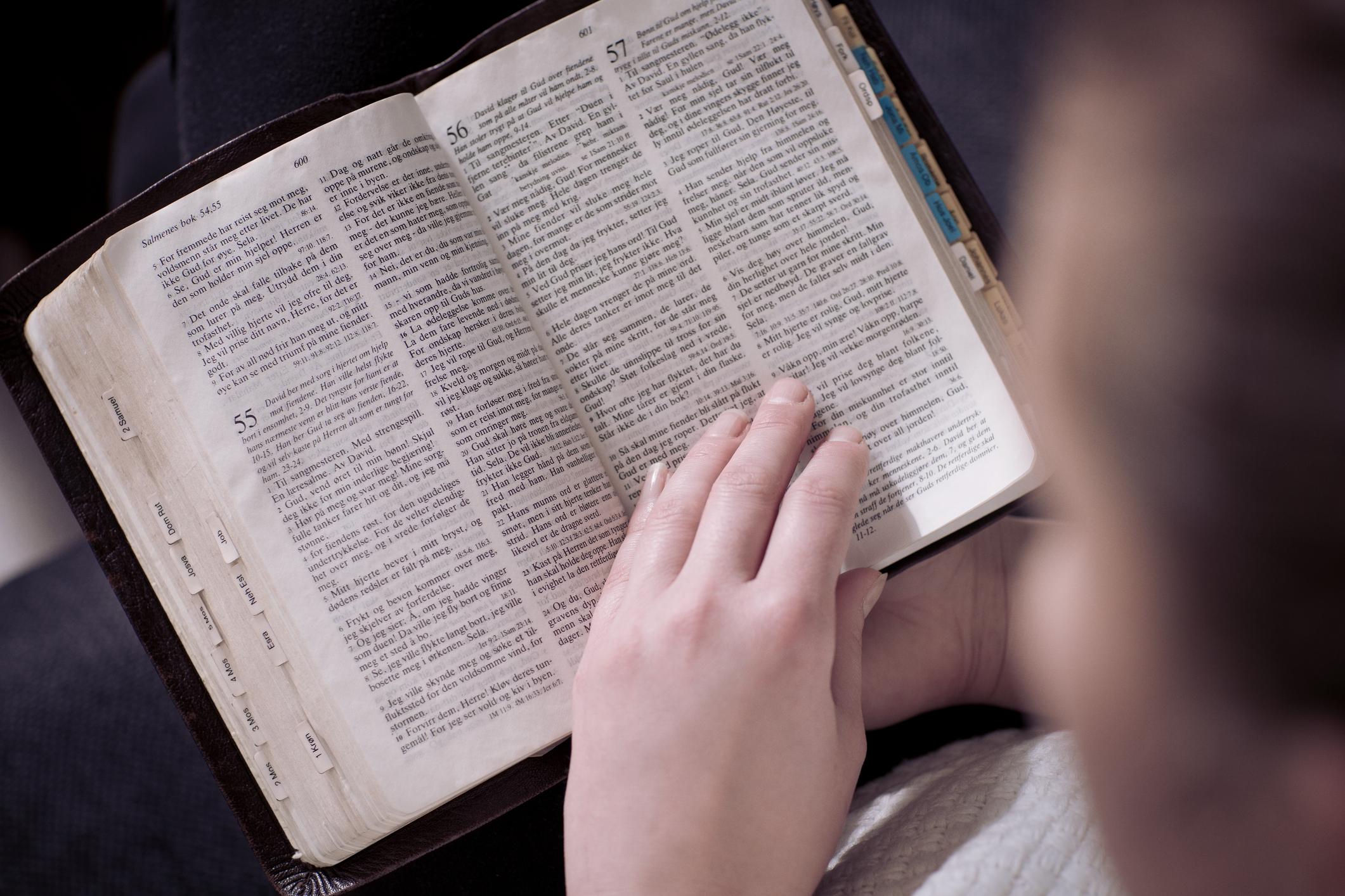 Bíblia em 1 ano – Leia o 295º dia