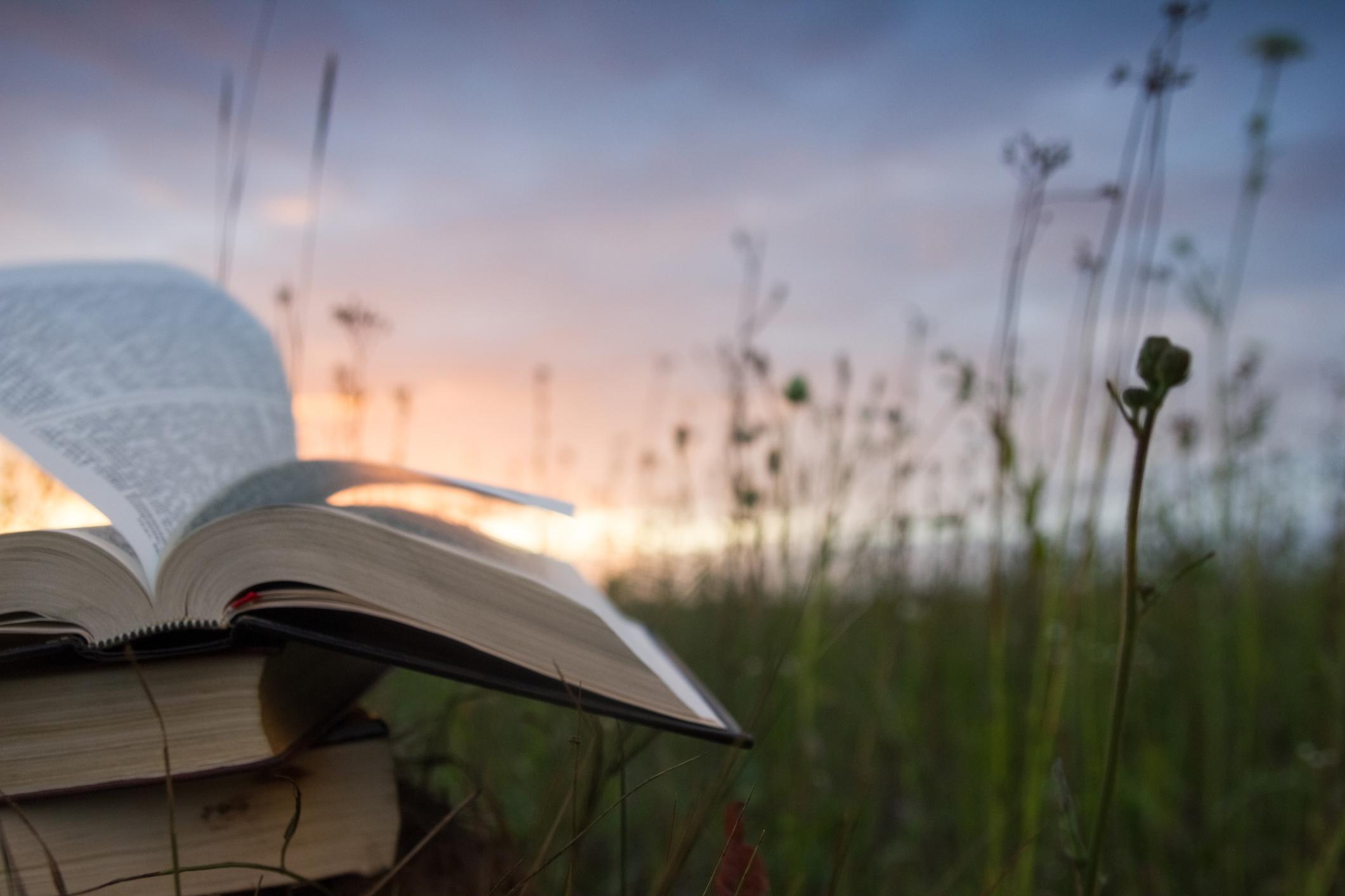 Leia a Bíblia em 1 ano – 174º dia