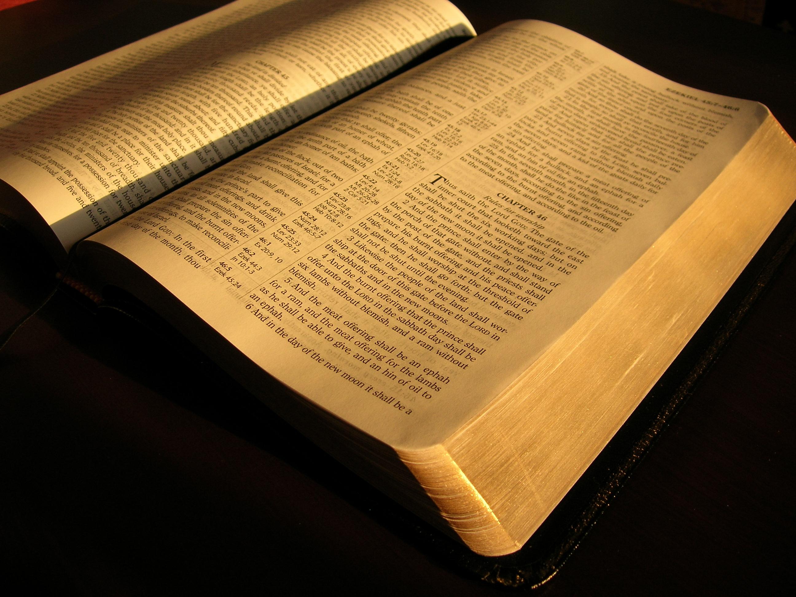 Bíblia em 1 ano – Leia o 319º dia