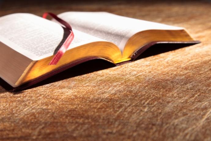 Leia a Bíblia em 1 ano – 13º dia