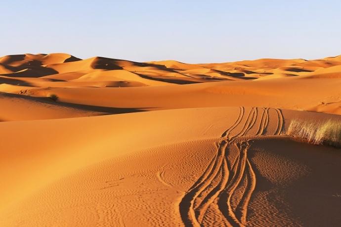 Você está preparado para o deserto?