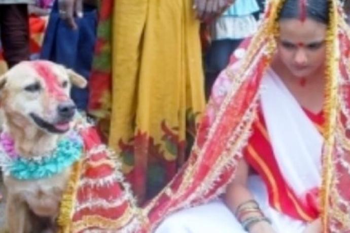 """Enquanto espera pelo """"príncipe encantado"""", jovem se casa com um cachorro"""