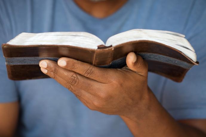 Leia a Bíblia em 1 ano – 100º dia