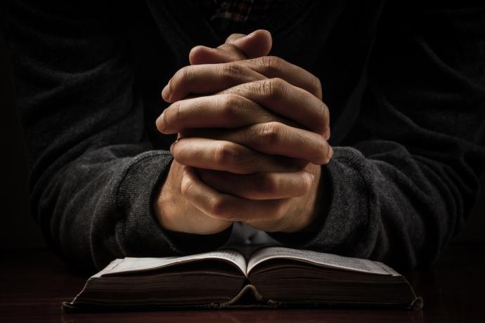 Leia a Bíblia em 1 ano – 113º dia