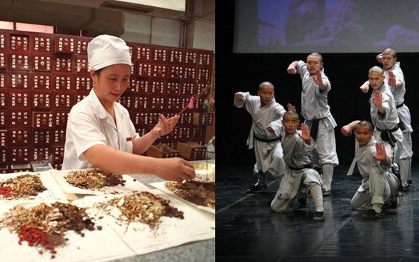Feature: Traditional medicine, martial arts – two giants of Chinese culture