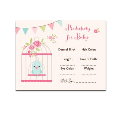 Baby-Shower-Bird-Cage-Predictions-For-Baby