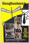 The North Avenue Irregulars (1979)