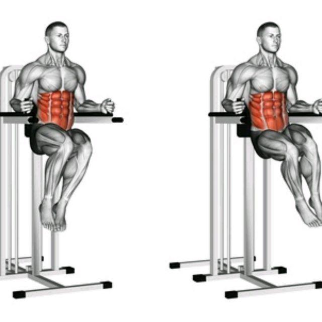 Muscle Up Leg Raises Rings