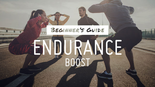 Beginner's Guide: Endurance Boost