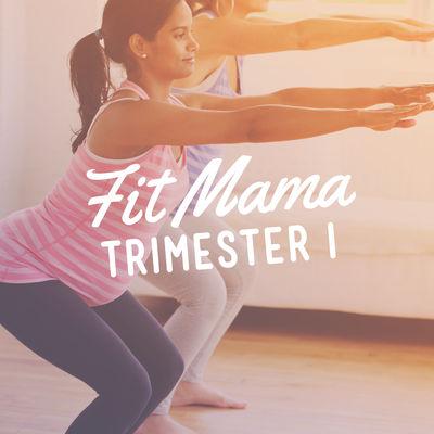 Fit Mama: Trimester I