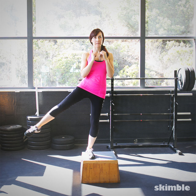 Lateral Step Ups with Right Leg Raise - Exercise How-to ...
