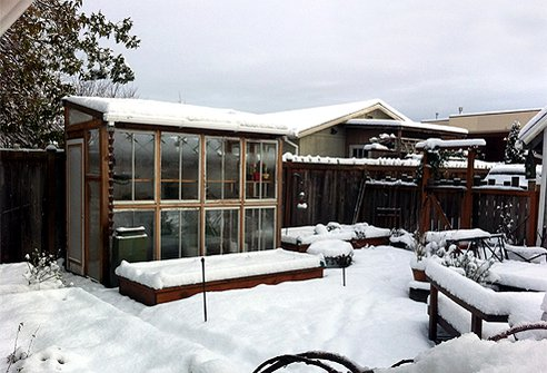 Window-frame-greenhouse-in-winter.png.492x0_q85_crop-smart