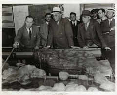 Caption: President Franklin Roosevelt examines a model of the proposed Quoddy Dam, Eastport, Maine in 1935. The project barely got off the ground before it failed miserably., Credit: National Archive.