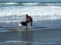 Caption: Jonathan Stalls and his dog arrive at Ocean Beach at the end of his walk across the U.S., Credit: Photo courtesy of Jonathan Stalls