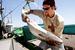 Caption: Fisherman Joe MacEnulty unloads salmon from the Melissa Jo at Pillar Point Harbor in Princeton-by-the-Sea. , Credit: Matthew Sumner
