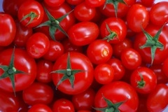 Caption: Tomatoes, Credit: Google Images