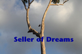 Sellerofdreams_small