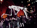 Halloweenparadeimage_small