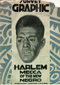 Harlemgraphicmedium_small