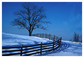 Treewinterscene_small