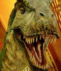 Caption: Where are your feathers, T-Rex?, Credit:  Image courtesy of Flickr user InfoMofo.