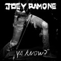 Joeyramone-yaknow_small