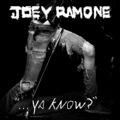 Joeyramone-yaknow_small
