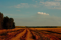 Back_roads_photo_by_amintiri_small