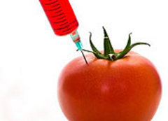Caption: Skeptic Check: OMG, GMO?, Credit: Seth Shostak