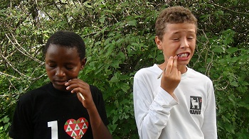 Caption: Richard and Moniko brushing their teeth with Mswaki, Credit: Paula Kahumbu