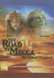 Prx piece the road to mecca road to mecca two meccaartsmall the true story of a reclusive elderly woman who created a fantastical world of light and sculpture in her small south fandeluxe Gallery