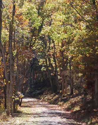Fall_in_shenandoah_2_small