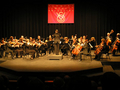 Vso-orch2edited-1_small